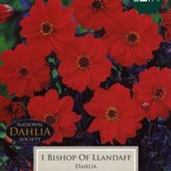 Bishop of Llandaff