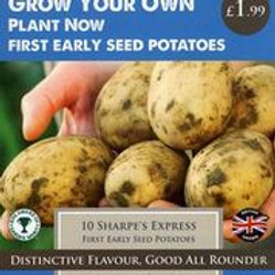 Sharpes Express Seed Potato