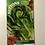 Thumbnail: Cos Lettuce- Little Gem