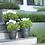 Thumbnail: Green basics campana living black 30cm