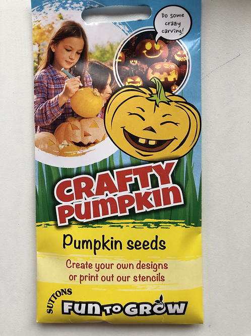 Craft Pumpkin Seeds