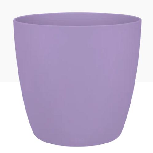 Brussels round mini new violet 10cm