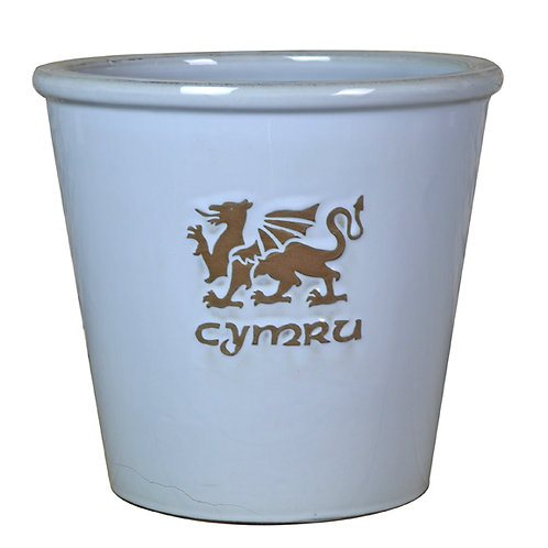 Pride of Wales Blue
