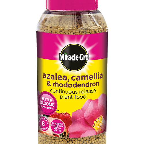 Miracle-Gro Slow Release Azalea, Camellia and Rhododendron Continuous Release