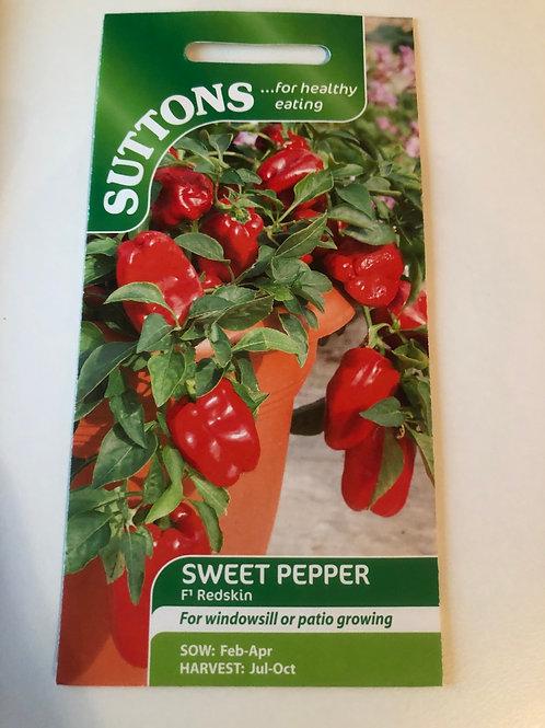 Sweet Pepper 'F1 Redskin'