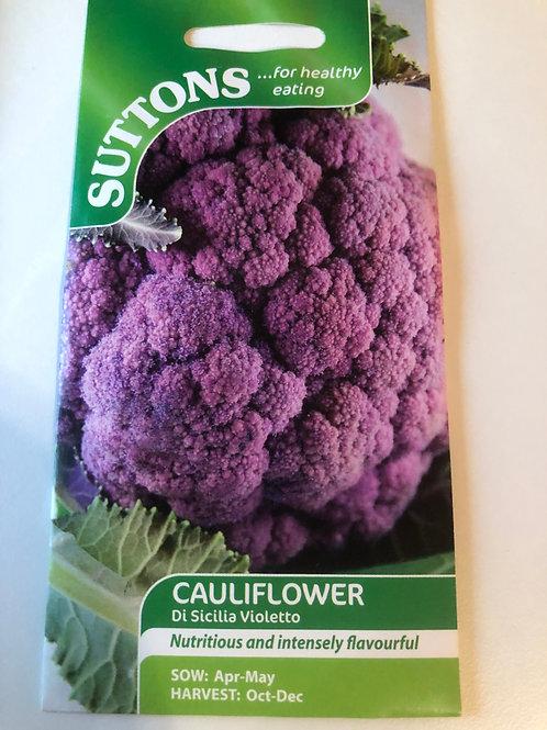 Cauliflower 'Di Sicilia Violetto'