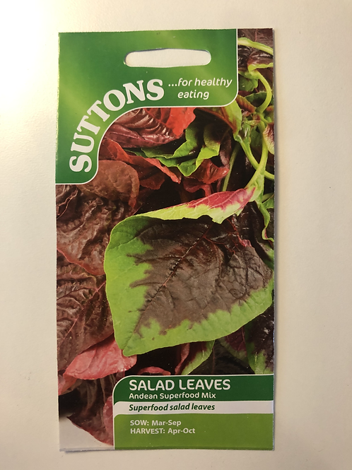 Salad Leaves 'Andean Superfood Mix'