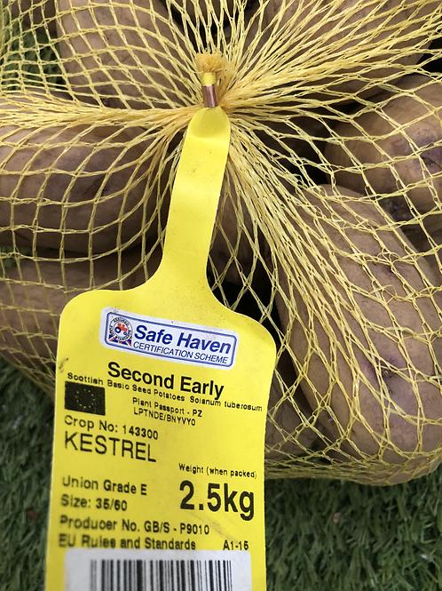 Kestrel Seed Potato 2.5kg