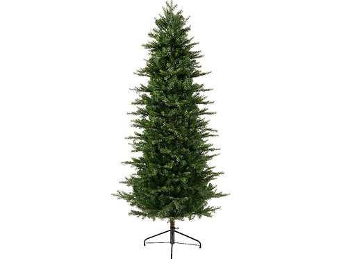 8ft Grandis Fir Slim