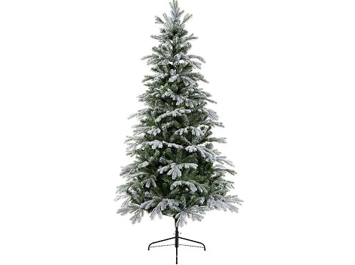 6ft Frosted Sunndal Fir