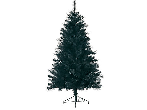 6ft Galloway Spruce