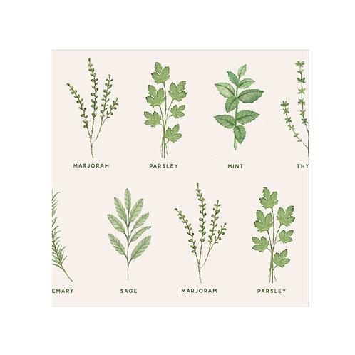 Herbs Napkin Design