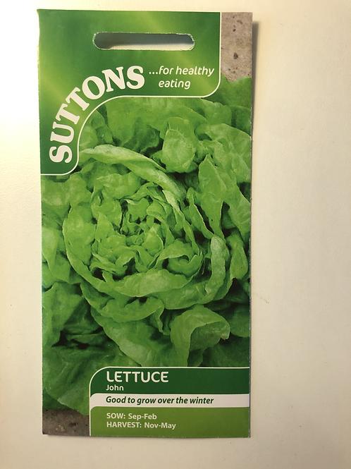 Lettuce 'John'