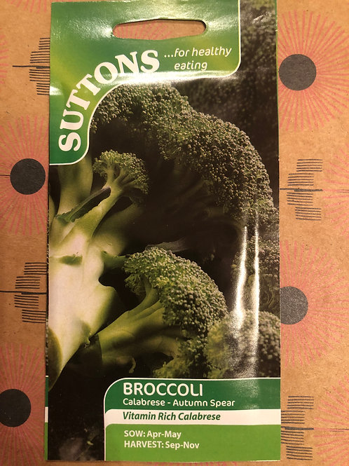 Broccoli Calabrese- Autumn Spear