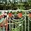 Thumbnail: Green Basic easy hanger mild terra small