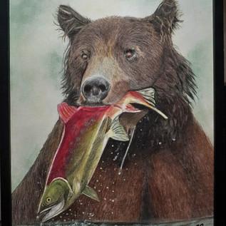 Urso pescando