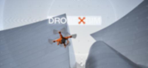 Dronexbim Drone Sapr fotogrammetria e rilievo