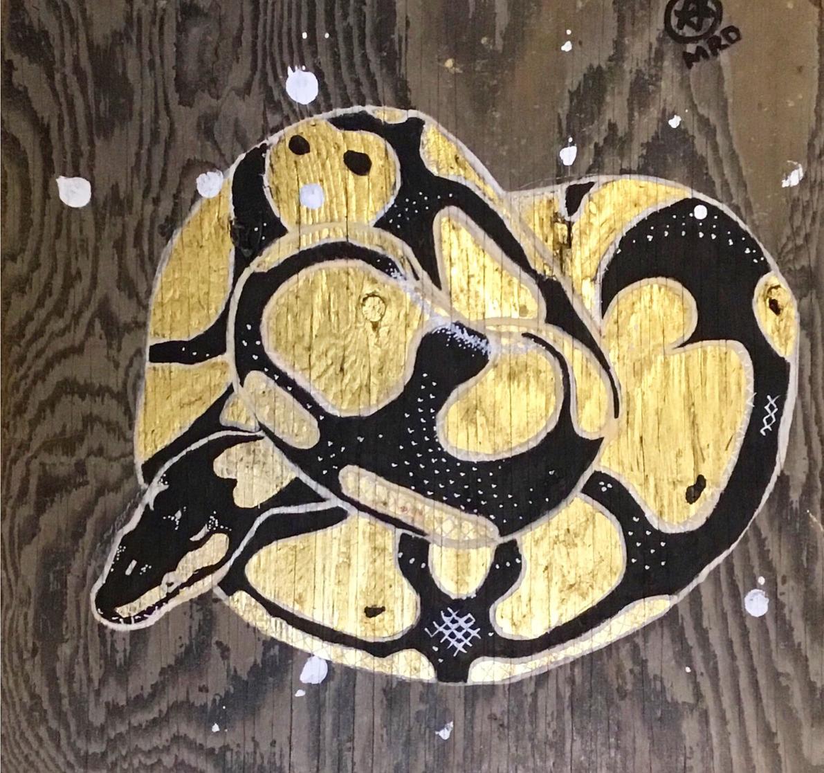 Coiled Python