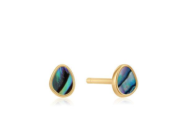 Gold Tidal Abalone Stud Earrings