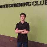 Swim 7.webp