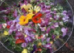 Blüten_essbar_20180904_122615.jpg