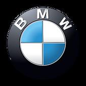 60181-mini-car-bmw-vehicle-logo-x5-luxur