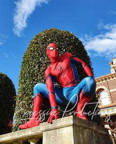 Spiderman 4.jpg