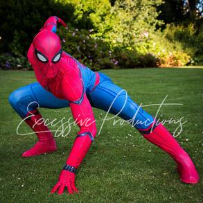 Spiderman 01.jpg