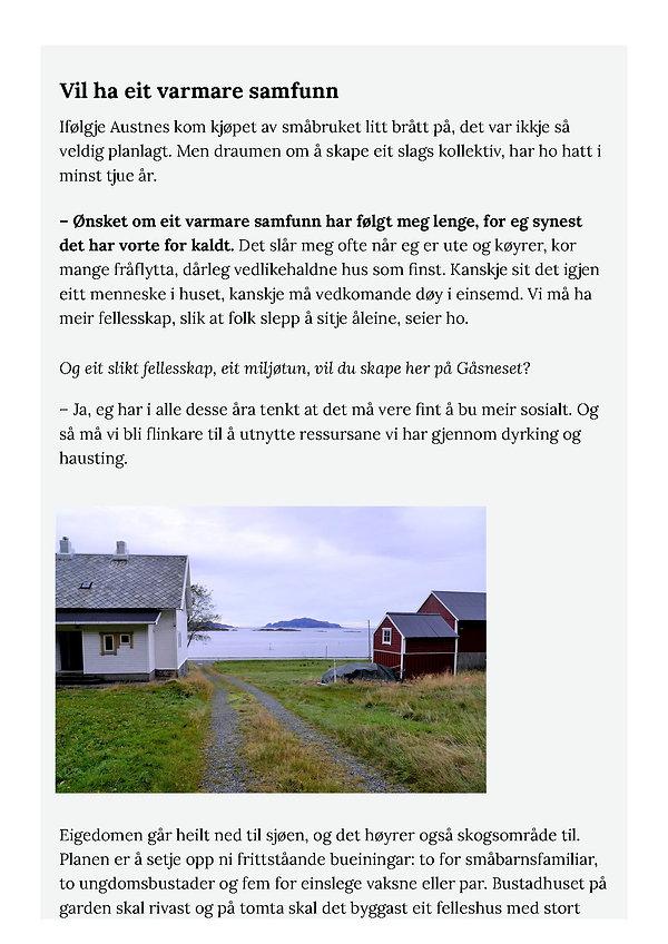 Vikebladet_4.jpg