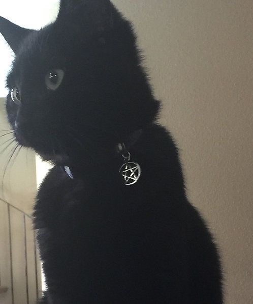 Charmed Pentacle Cat Collar