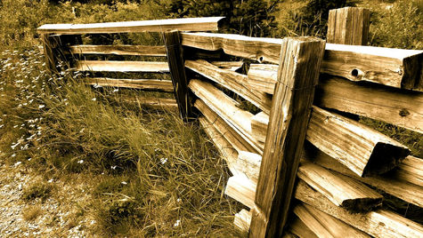 Follow the Wooden Fence