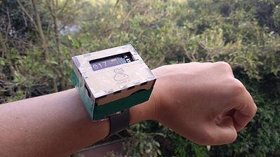 6 nuevo modelo de canario reloj.jpg