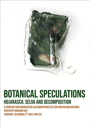 Botanical-Speculations-Hojarasca__11.png