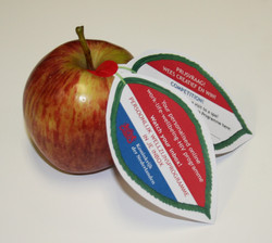 Health Day Apples