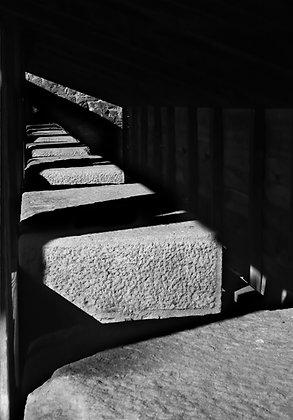 Carcassonne 4