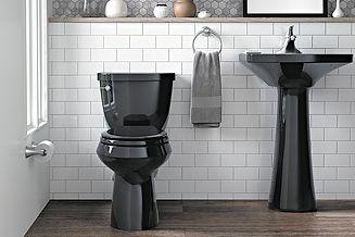 toilet sink.jpg
