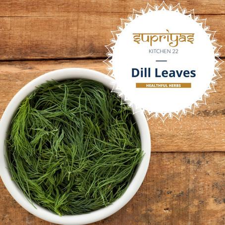 Healthful Herbs: Dill Leaves