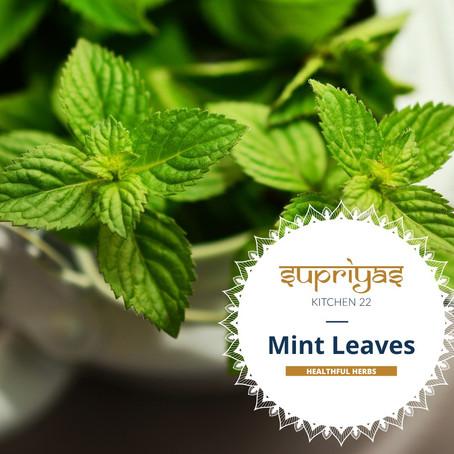 Healthful Herbs: Mint Leaves