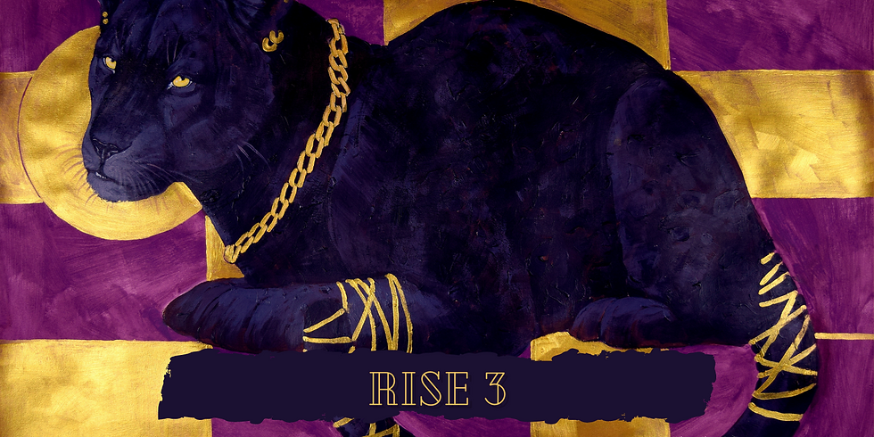 RISE 3: Meet the Artists - Exhibit Reception