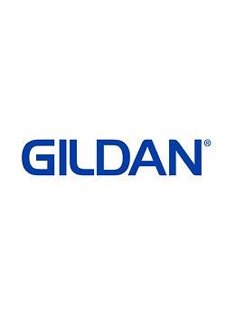 GILDAN colortone.jpg