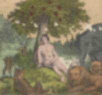 VANITA 2.jpg