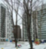 Бескуд-двор+2.jpg