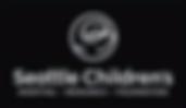 logo_vsm_rev_edited.png