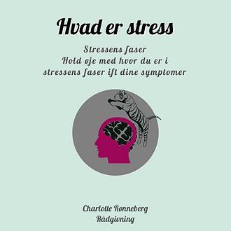 Hvor er du på stress-skalaen ift. de 4 stress faser?