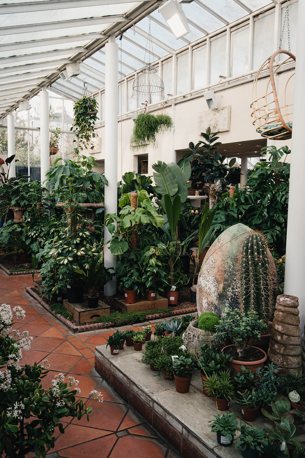 Photograph of the green house at Clifton Nursery
