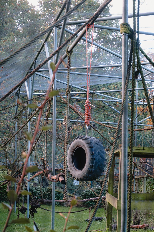 Golders Hill Zoo