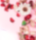 pink-flowers-edge-fade1.png
