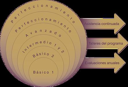 programa_curricular_perfeccionamiento_ba