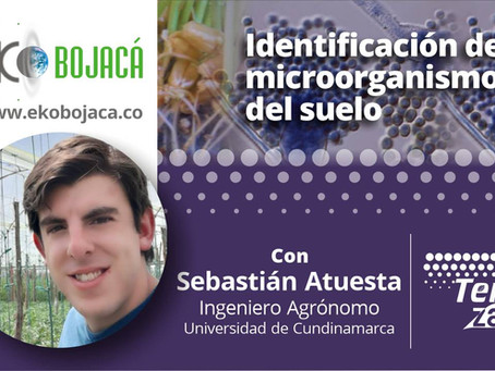Capacitación sobre los microorganismos del suelo en Eko Bojacá