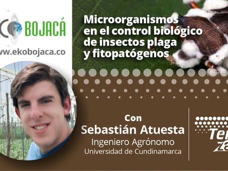 Control biológico en las capacitaciones de Eko Bojacá